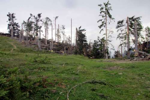 Sturmschaden am Weissensee - © www.seehauswinkler.at
